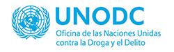 oficina naciones unidas droga delito consultores